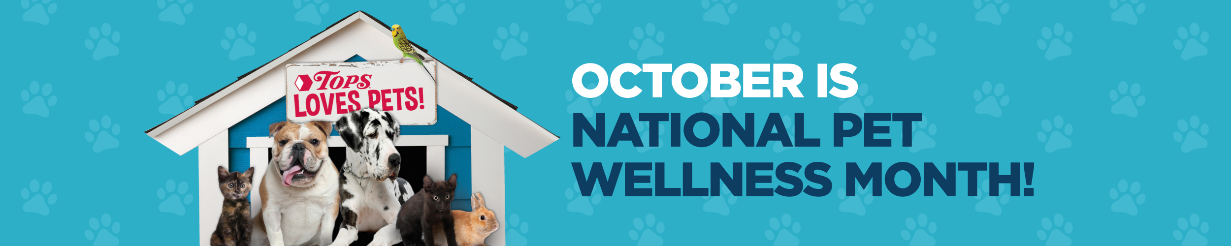 October is Natoions Pet Wellness Month